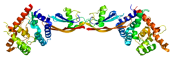 Protein GFRA3 PDB 2gh0.png
