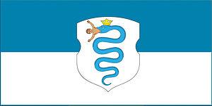 Pruzhany - Image: Pruzhany flag concept d 1