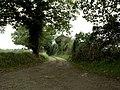 Public Footpath and track to Dewland's Farm - geograph.org.uk - 275383.jpg