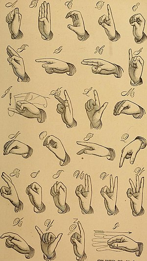 Letter (alphabet) - The American manual alphabet, an example of letters in fingerspelling.