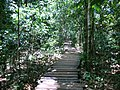 Puerto Princesa, Palawan, Philippines - panoramio (19).jpg