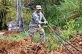 Puerto Rico and South Carolina National Guard (37380518590).jpg