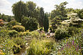 Queen Mary's Garden IMG 4425.jpg