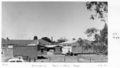 Queensland State Archives 6796 Yerongpilly Agriculture and Stock buildings August 1959.png
