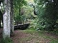 Quiet Scene, New Forest. - panoramio.jpg