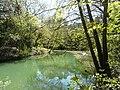 Réserve Naturelle du Lez (2397602524).jpg