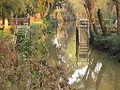 Río Abra Vieja.JPG