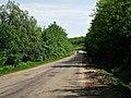 R30, Căușeni, Moldova - panoramio (17).jpg