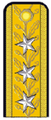 Romanian tunic shoulder board of a viceamiral