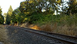 Railroad tracks at Middleton