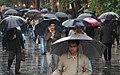 Rainy day of Tehran - 29 October 2011 34.jpg