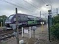 Rame TER Gare Pont Veyle Crottet 3.jpg