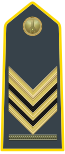 Rank insignia of brigadiere capo of the Guardia di Finanza.svg