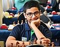 Raunak Saadwani, Chess Grand-master.jpg