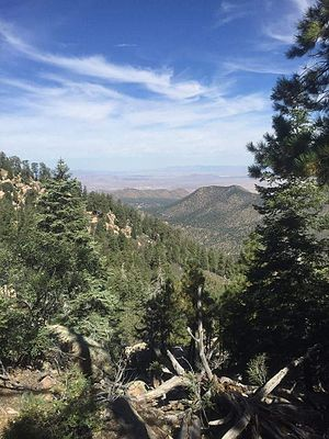 Hualapai Mountains - View of Kingman, Arizona, from the top of the Hualapai Mountains