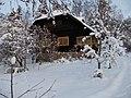 Renvallin huvila Tervapaasky talvi.jpg