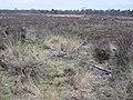 Resten vliegveld Ermelosche Heide (30708808964).jpg