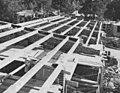 Riksradsv 1956c.jpg