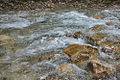 River Mali Rzav and Visocka Banja Spa in Serbia - 4283.NEF 25.jpg