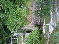 River Ouse Heron, Bedford (9055737252).jpg