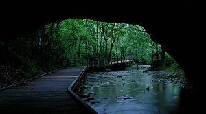 Rock Bridge Memorial State Park - Rock Bridge in 2006