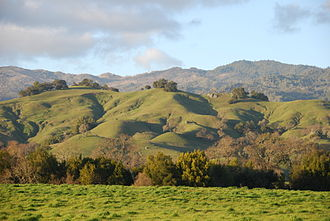 Napa County, California - Rolling hills of Napa Valley