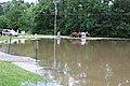 Roman Forest Flooding - 4-18-16 (26514795885).jpg