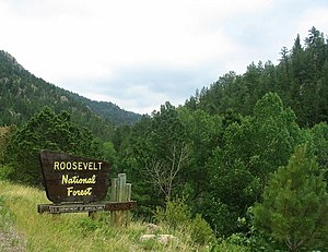 Roosevelt National Forest - Entrance to Roosevelt National Forest near Estes Park, Colorado.