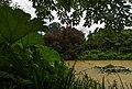 Royal Botanic Gardens, Kew - panoramio.jpg