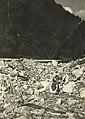 Ruševine cerkve v Dražgošah.jpg