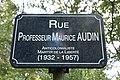 Rue Professeur Maurice Audin, Rennes, 2019.jpg