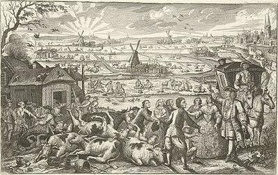 Runderpest in Nederland 18e eeuw.jpg