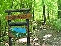 Ruppiner See - Uferwanderweg (Ruppin Lake - Bankside Path) - geo.hlipp.de - 39783.jpg