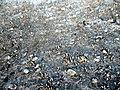 Rusanda75 slani kristali.jpg