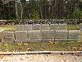 Sõdurite hauad Vananõmmel 7 ja Vladimir Dejevi haud.JPG