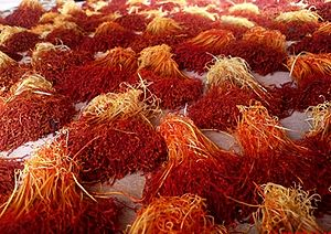 Saffron (color) - Valuable stigmas, or threads from flowers are tediously plucked, piled, and dried.