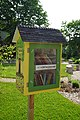 Saline May 2015 09 (Little Free Library).jpg