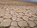 Salt desert ethiopia.jpg