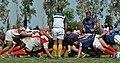 San Jorge Rugby Club.jpg