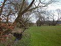 Sanderson's Brook, Bradwall Green. - geograph.org.uk - 375639.jpg