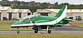 Saudi Hawk 8814.JPG