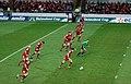 Scarlets vs Treviso - panoramio.jpg