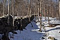 Scenic Hudson's Black Creek Preserve winter.JPG