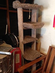 cat-tree-and-scratching-post