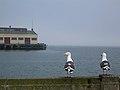 Seagulls.Municipal pier - panoramio.jpg