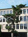 Seebach Schulhaus Buhnrain 6 2014-08-24.JPG