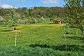 Seewald Korntal (2).jpg