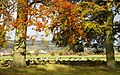 Semi-rural scene at Cubley, Penistone - geograph.org.uk - 1780593.jpg