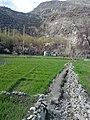 Serling Mehdiabad.jpg