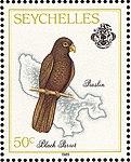 Seychelles black parrot 1989 stamp.jpg